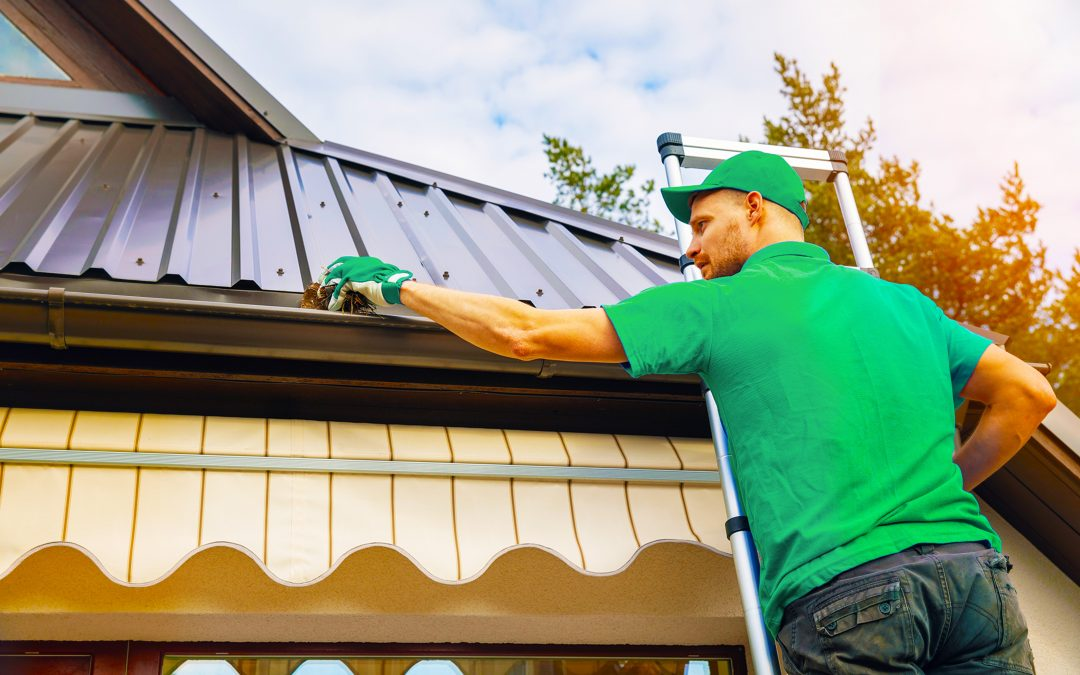8 Reasons Why It's Important To Have Your Gutters Cleaned By A Professional