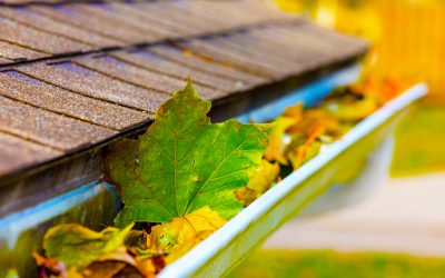 Why You Should Keep Your Gutters Clean