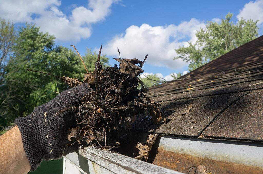 The Importance of Long Island Gutter Cleaning