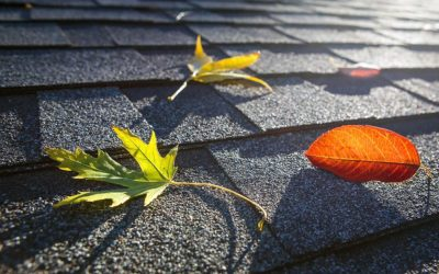 Do I Need Long Island Gutter Cleaning?