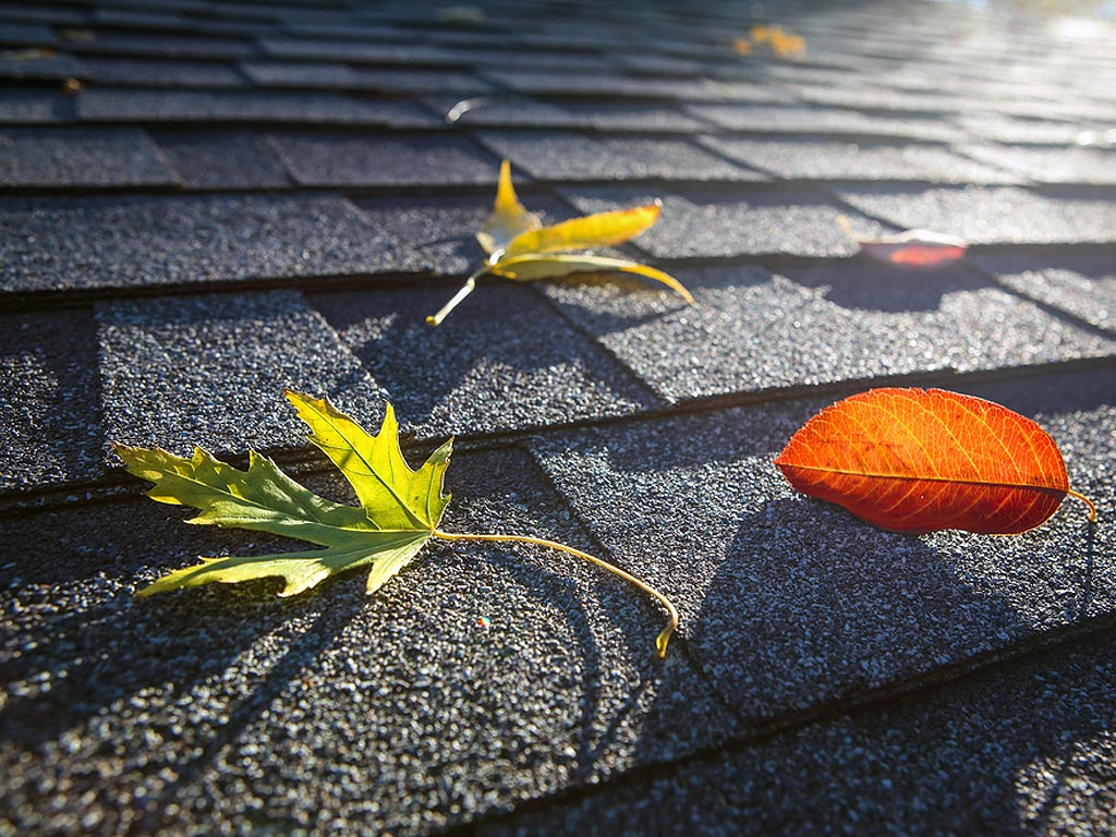Need Long Island Gutter Cleaning Fall Leaves