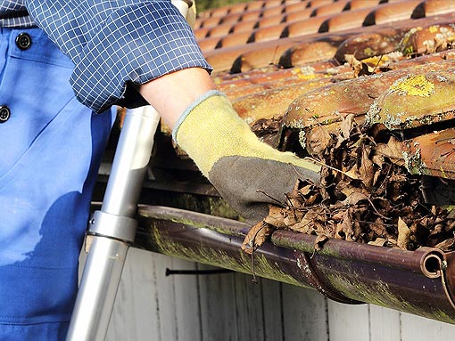 Services Long Island Gutter Cleaning